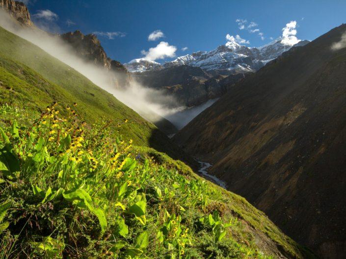 Magie hor | Mountain Mystery
